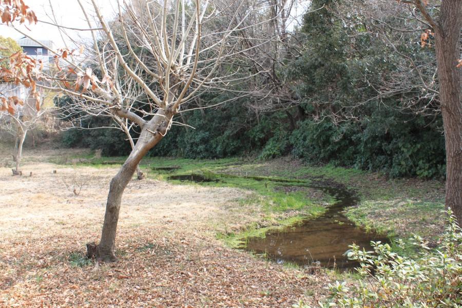 Imaizumihotaru Park - 2