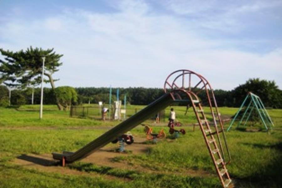 히라쓰카 쇼난 해안 공원(sunsun마르셰 개최 장소)