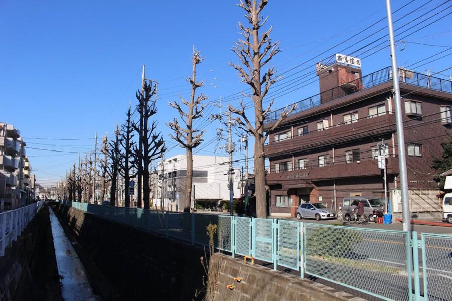 아리마 요양 온천 료칸 - 2