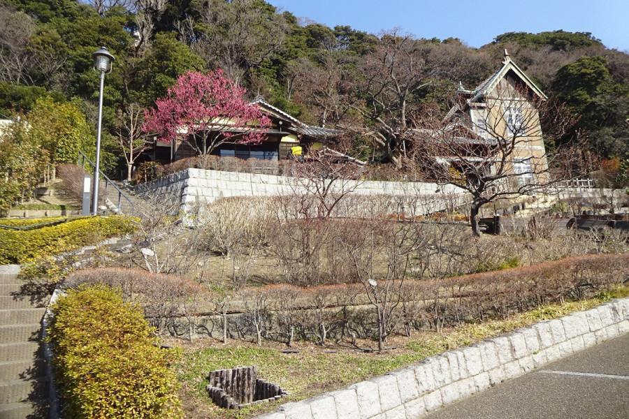네기시 나츠카시 코엔 공원: 옛 야기시타 레지던스 - 2