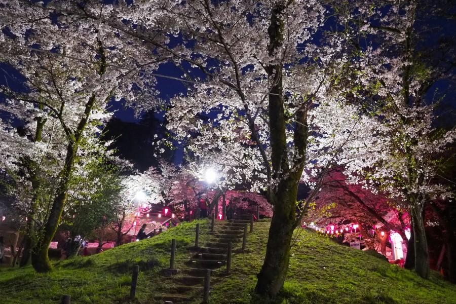 สวนลิยะมะ ฮะคุซาน ชินริน - 1