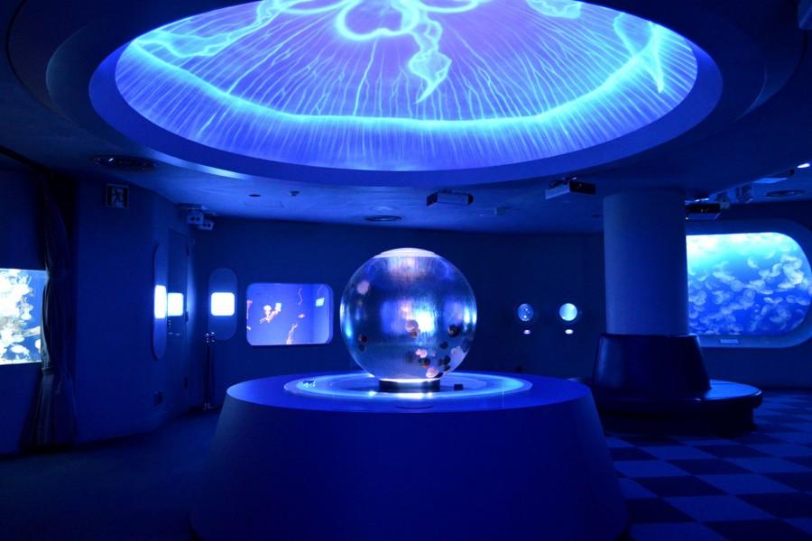 Aquarium d'Enoshima - 2