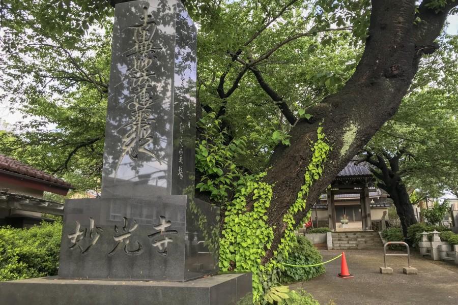 Myōkō-ji Tempel - 2