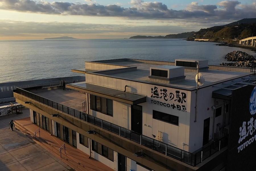 Gyoko no Eki: TOTOCO Odawara - 2
