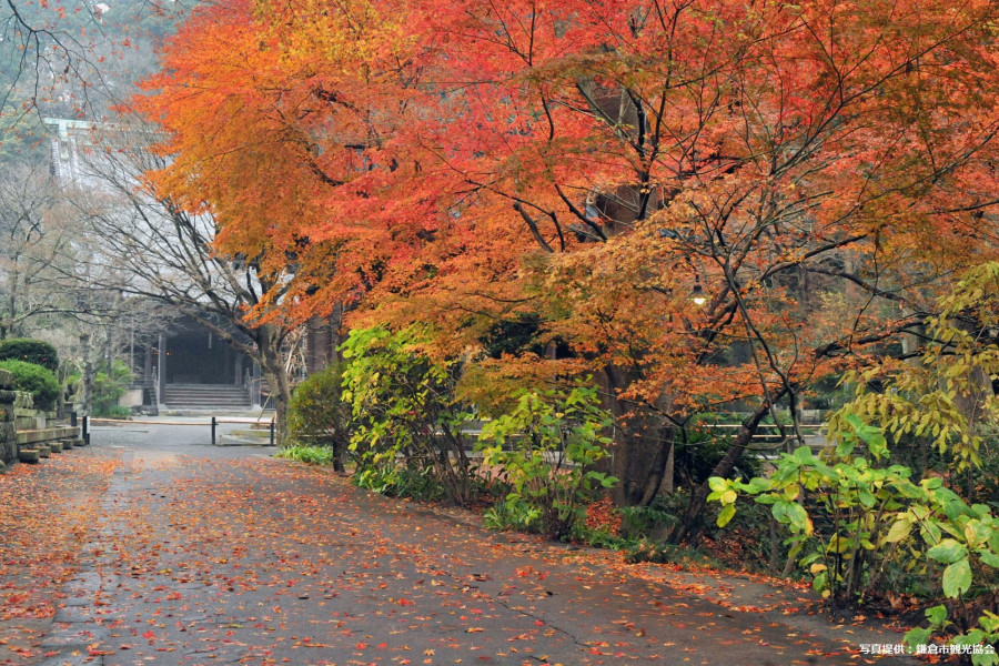 Temple Myōhon-ji