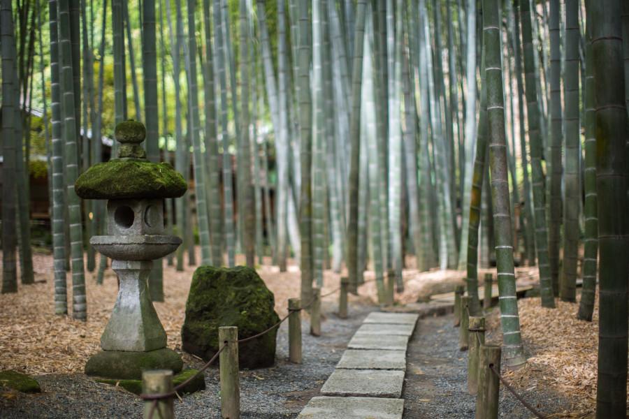 Hōkoku-ji Tempel - 1