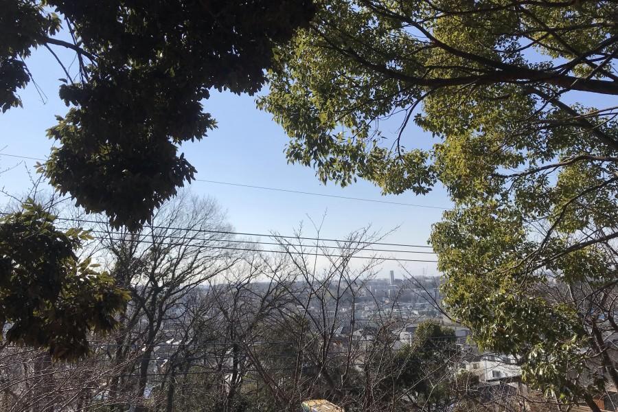 Kanahodo Manyouen (Zone nord de Asao-ku / chemin avec vue sur le Mont Fuji) - 1