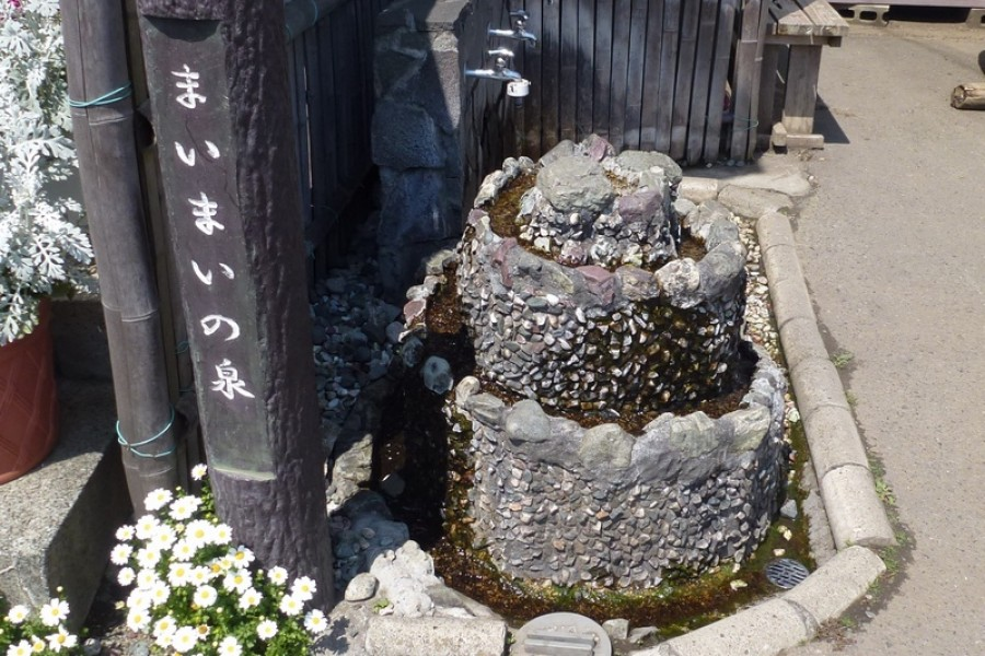 The Spring of Maimai - 1