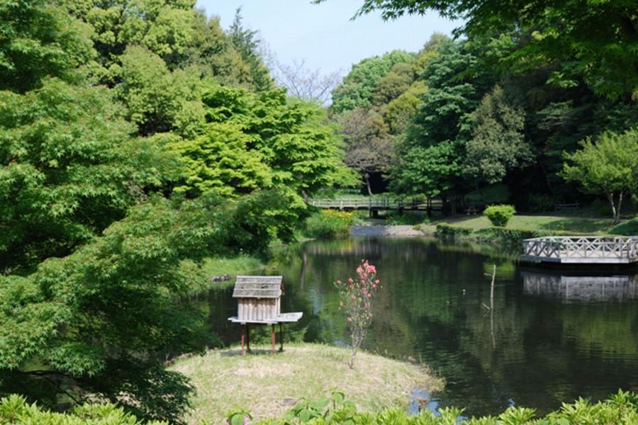 도호가와 공원 - 2