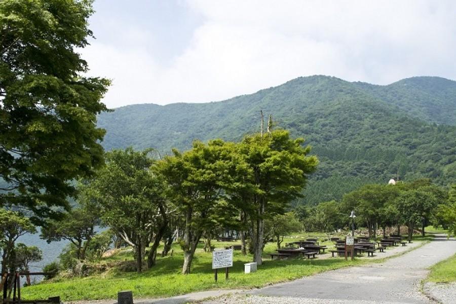 芦之湖露营村 - 2