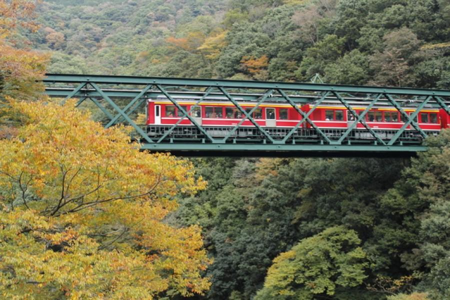 秋日之出山鐵橋與早川清流