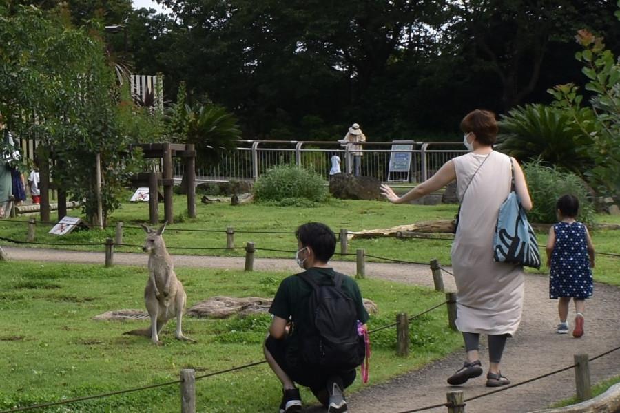 金沢动物园