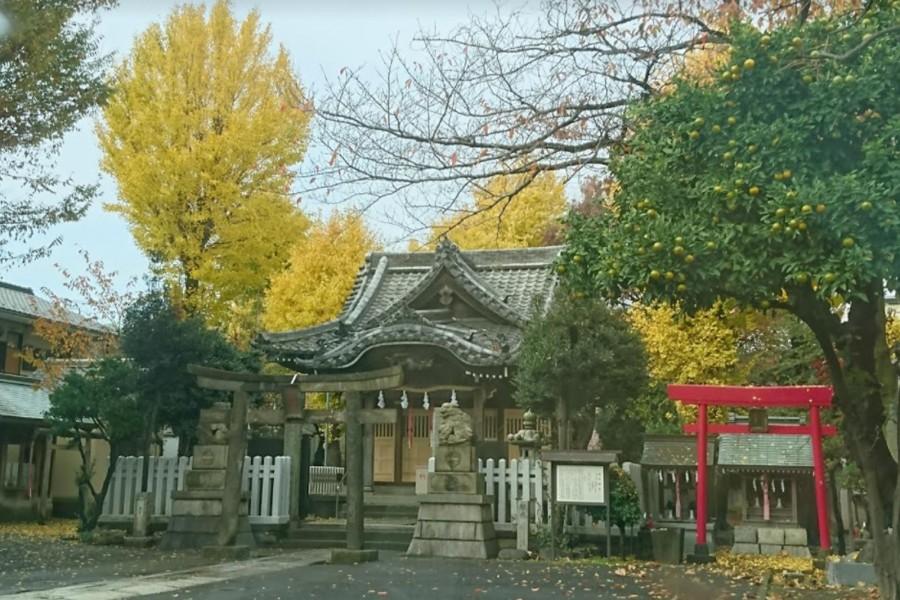 新田神社 - 1