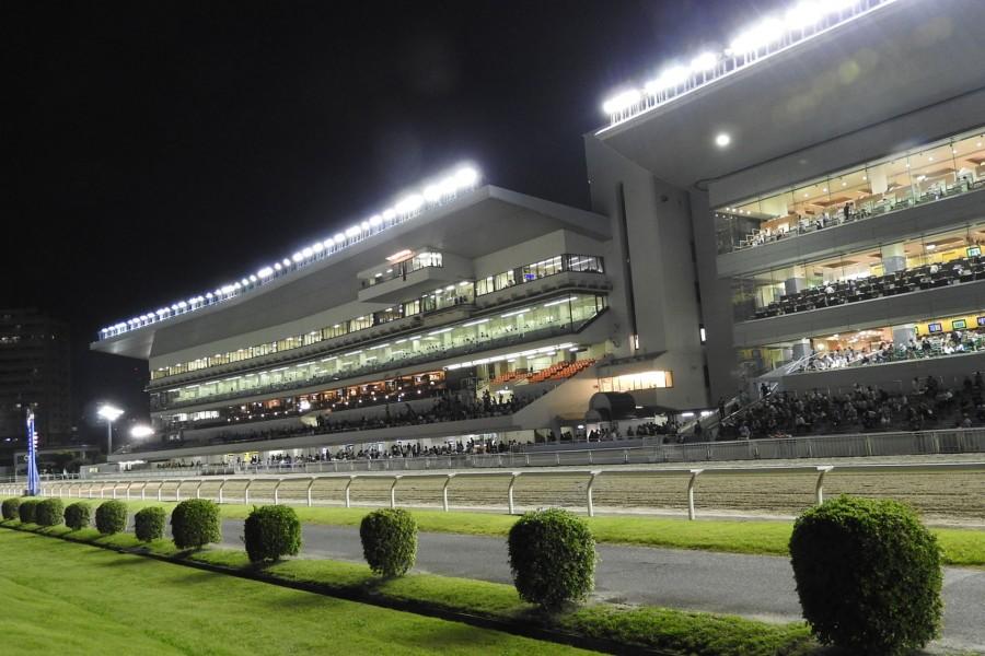 สนามแข่งม้าคาวาสะกิ (ดูการแข่งม้า, ลองขี่ม้า ฯลฯ ) - 2