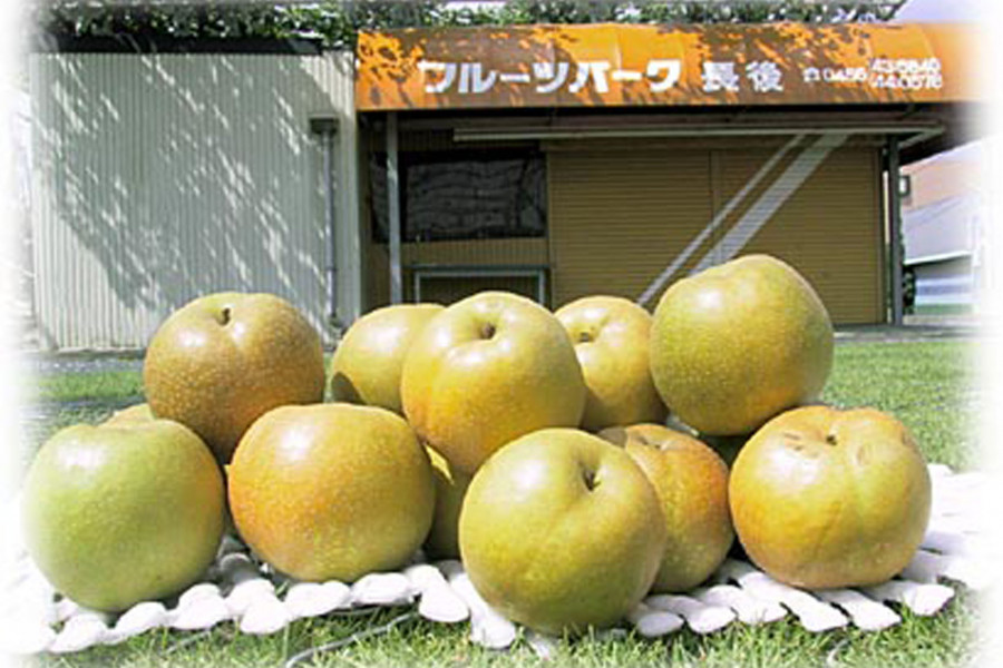 Công viên hoa quả Chogo