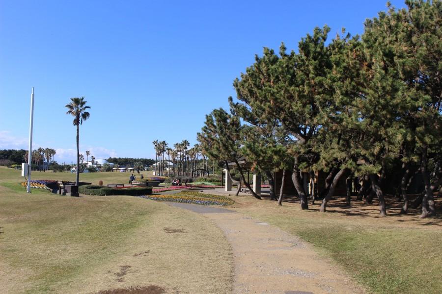 辻堂海浜公園 - 2