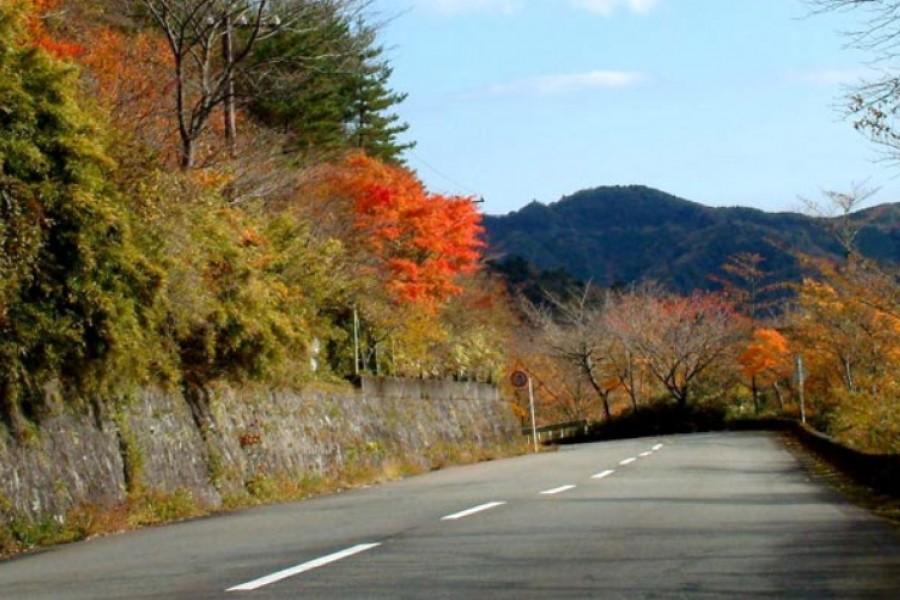 Đại lộ Yugawara - 2