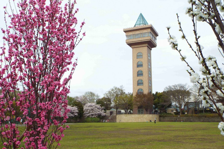 Green Tower Sagamihara - 2