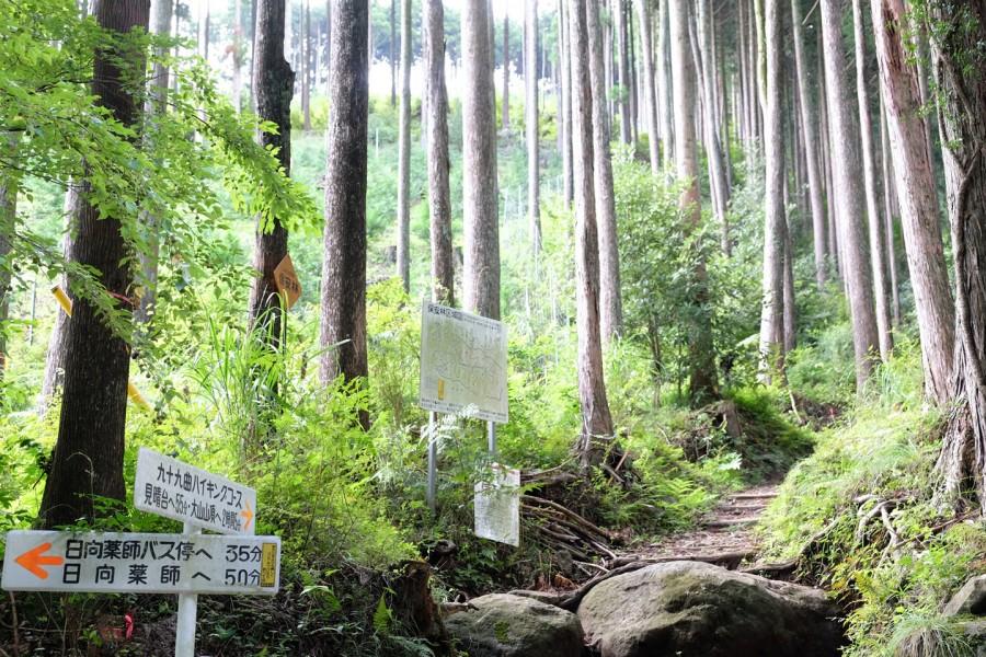 Tuyến đường đi bộ leo núi Kujyukukyoku (99 khúc cua) - 2