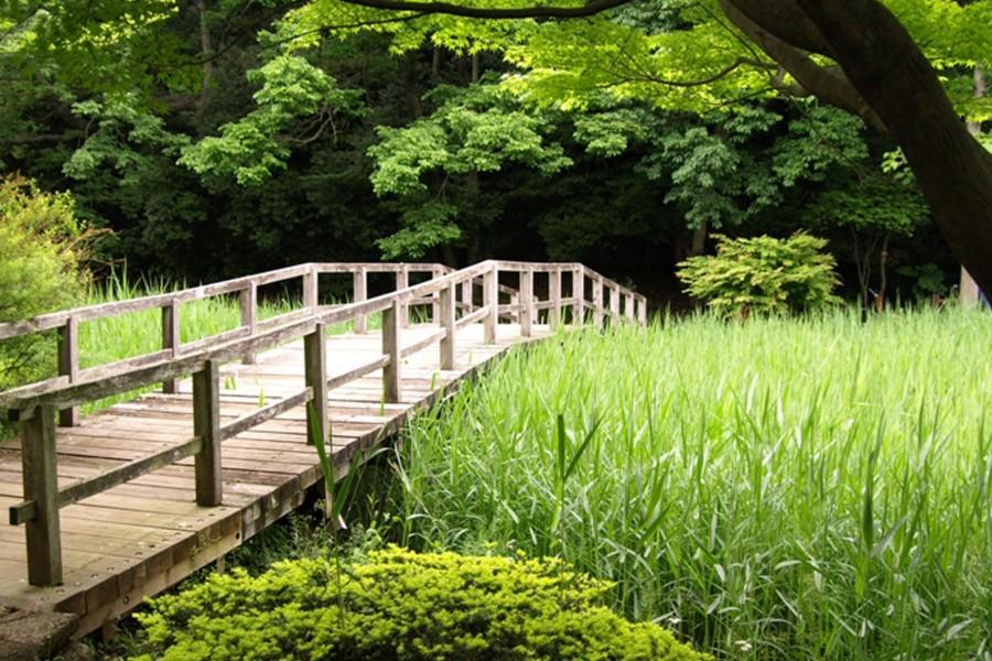 도호가와 공원 - 1
