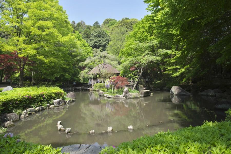 Higashitakane Forest Park