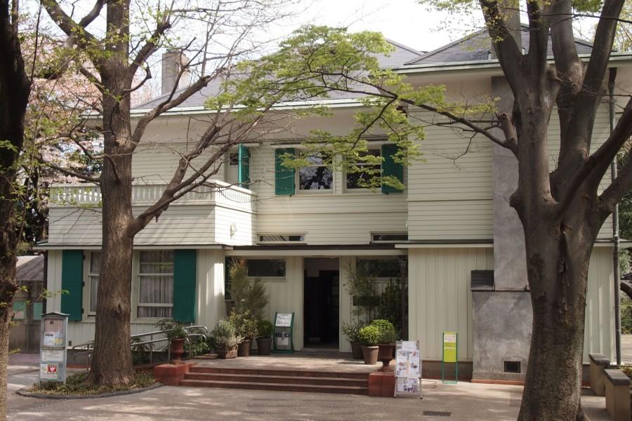 Ehrismann Residence - 2