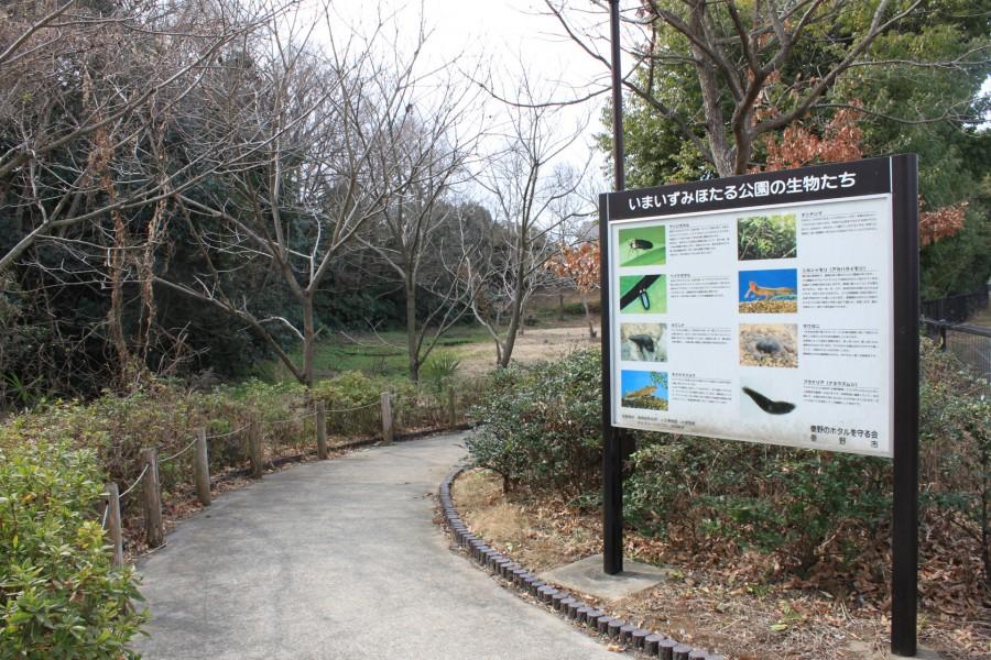 Công viên Imaizumihotaru - 1