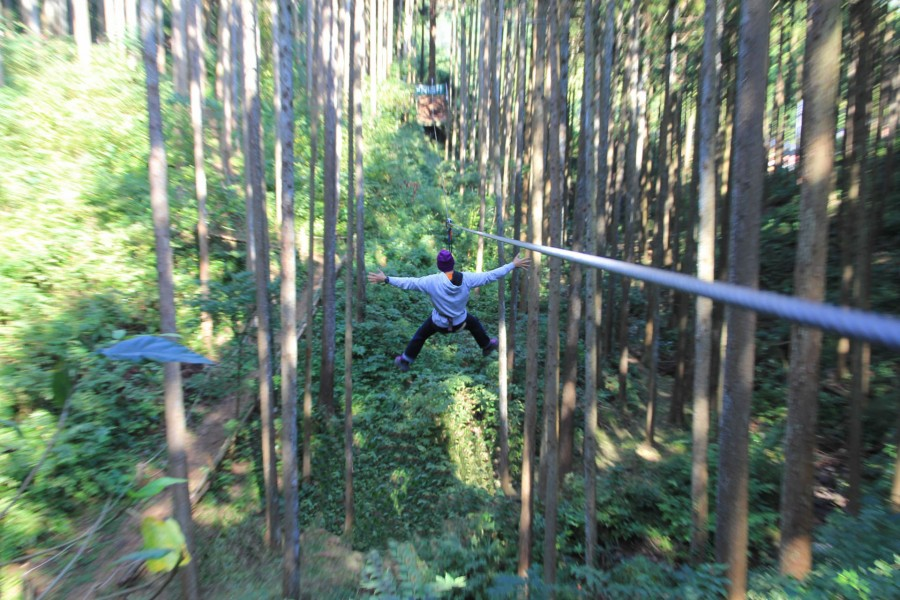 Forest Adventure Odawara - 1