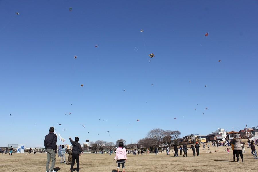 えびな凧揚げまつり - 1