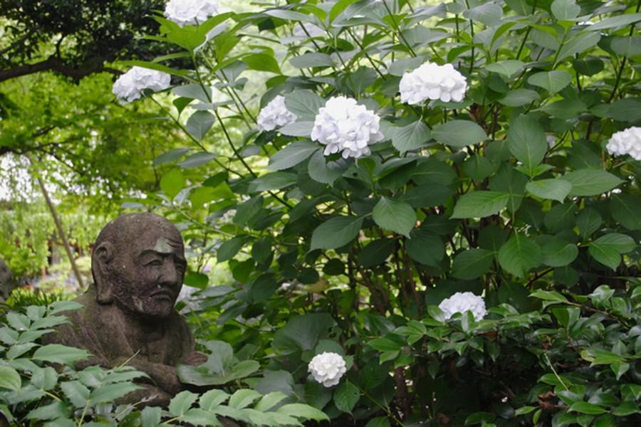 Jokeiji Tempel・Akiba Schrein
