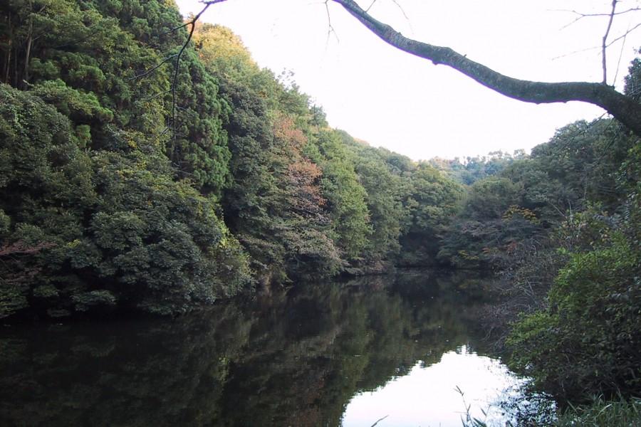 산자가이케 삼림공원