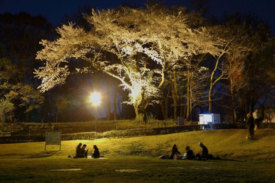 Công viên Bosai-no-Oka (Công viên đồi phòng chống thiên tai)