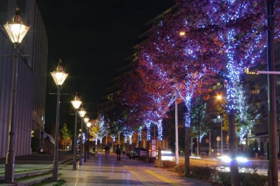 Shinyurigaoka Illumination kirara @ Art Shinyuri  - 1