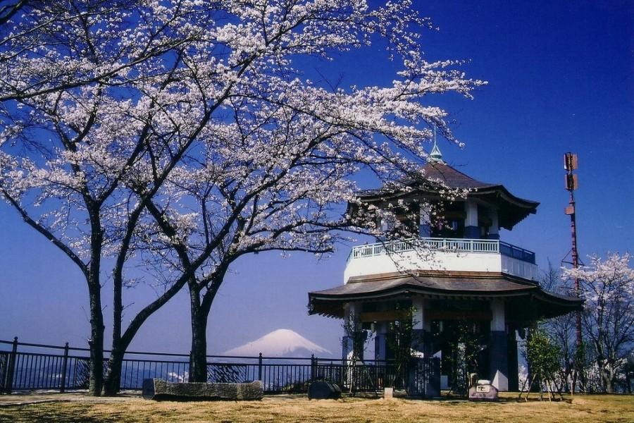 弘法山公園 - 1