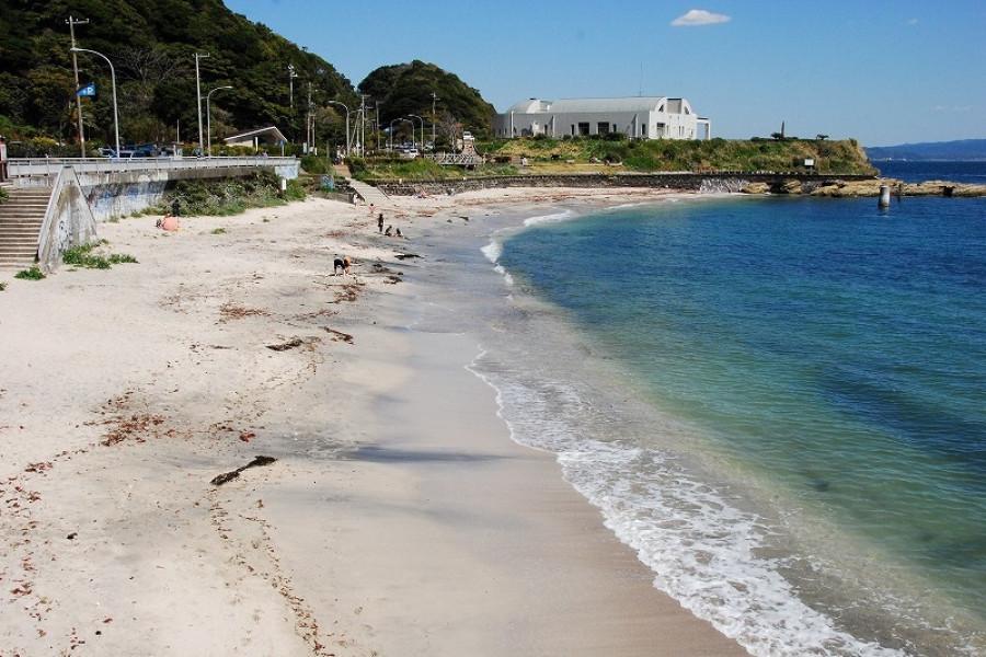 多多良海灘