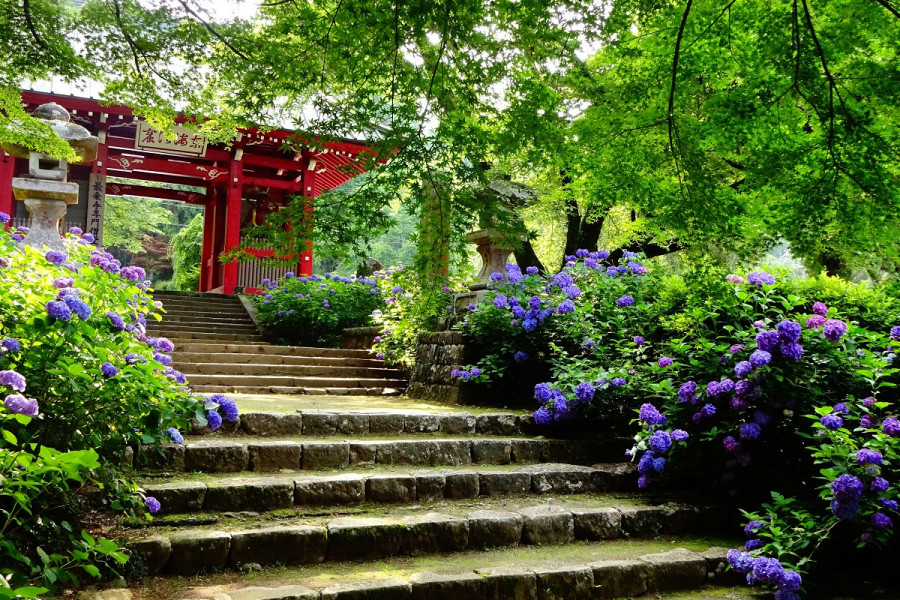 Daiyūzan Saijō-ji Tempel - 1