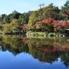 고도모시젠 공원(오이케 공원)